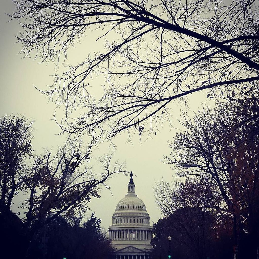 Happy Thanksgiving Everyone! Some gloomy days ahead. But nothing is going to last forever. Be Thankful. (Not to Congress ofcourse ) #traveldiaries #travelingram #wanderlust#globetrotter #instadaily #instagramdc #dc#road #like #likeforlike#likeforf… http://ift.tt/2B78zjrpic.twitter.com/hPEYlpBXE7