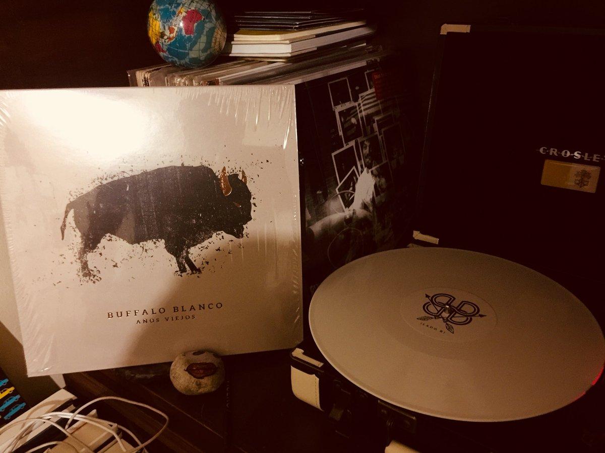 Buffalo blanco