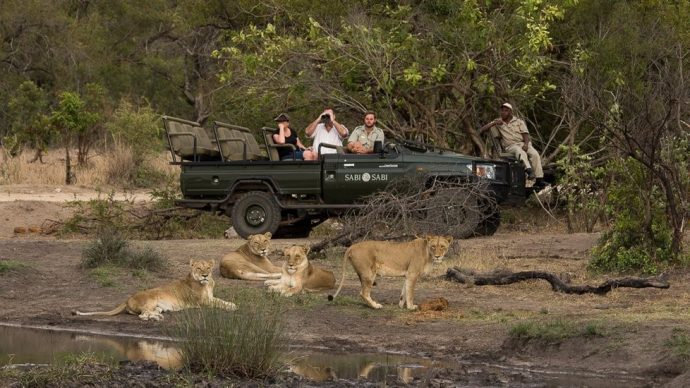 Planning an #African #Safari ? Here are 7 of the best #NationalParks to choose from..   http:// bit.ly/2zLjZwm  &nbsp;     #travelblog #traveltips #safarilive<br>http://pic.twitter.com/mT3SyL1iw1