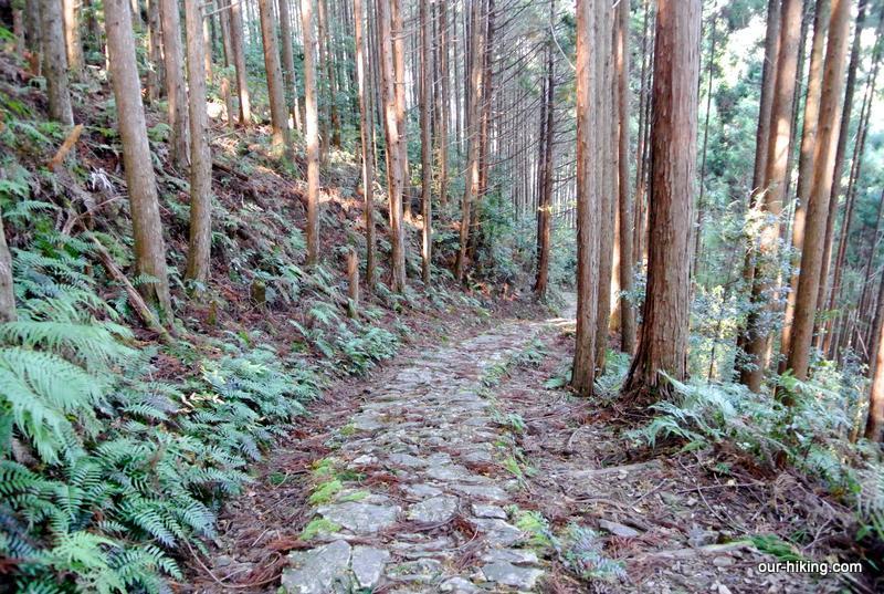 先日の熊野古道トレッキングのレポートをUPしました。よろしかったらご覧下さい。  http://www.our-hiking.com/trekking-kumanokodo1.html…