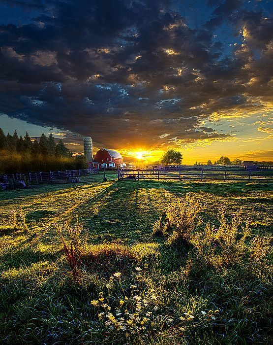You can only come to the morning through the shadows. JRR Tolkien #writing #gratitude #inspiration #film #acting #Art &quot;America&quot; by Phil Koch<br>http://pic.twitter.com/ggBGqJzOxu