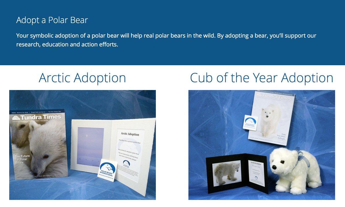 Polar Bears Intl The Gift Of A Symbolic Polar Bear