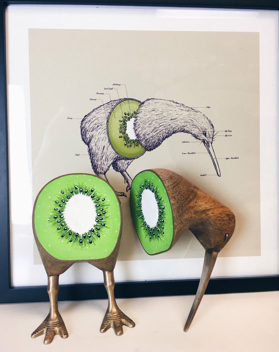 Sarah Mcgonagall On Twitter My Brother Has This Drawing Of A Kiwi