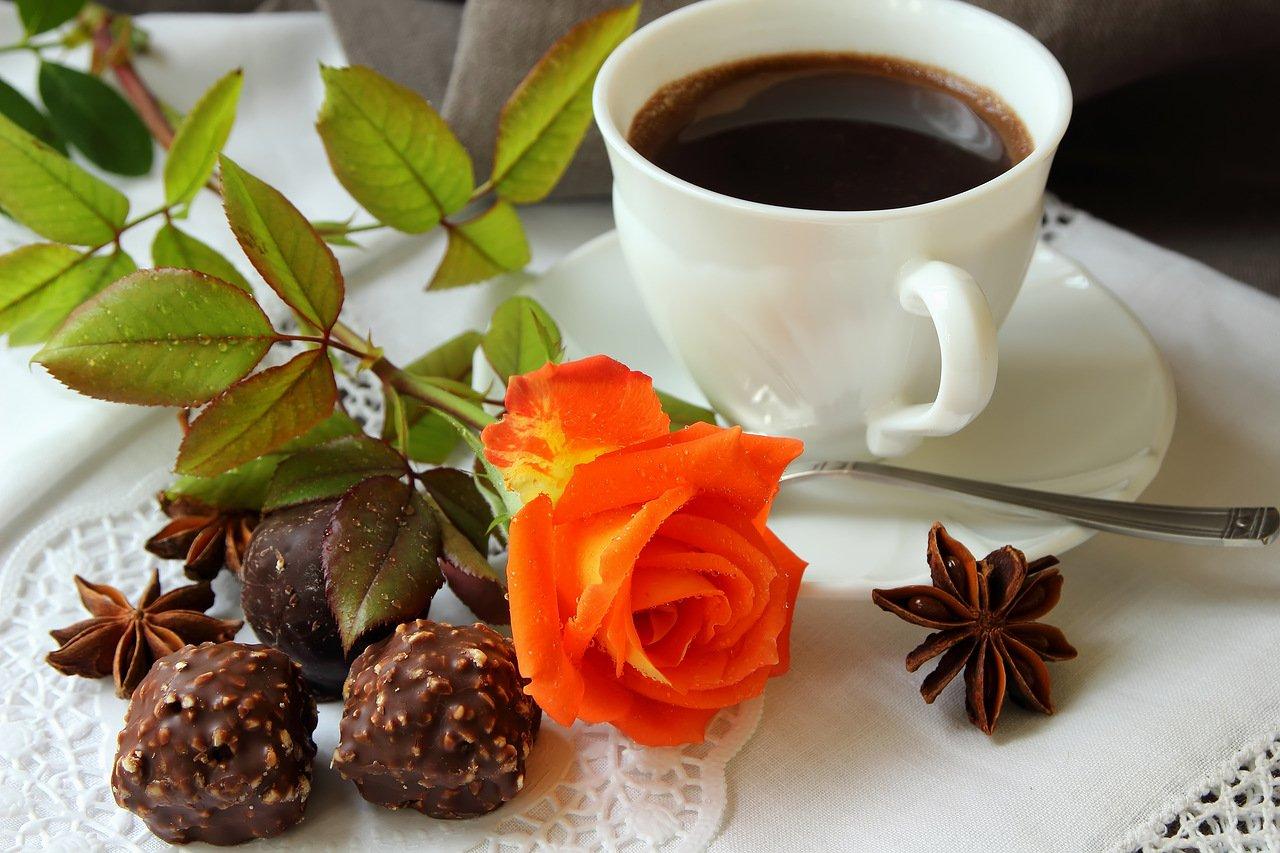 Открытка цветок и кофе, принцессой рапунцель открытки