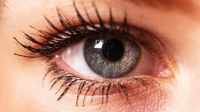 The eyes have it - top tips for healthy eyes. #eyehealth #eyecare  http:// ow.ly/AAoT30gE6um  &nbsp;  <br>http://pic.twitter.com/9Va9C0YctU