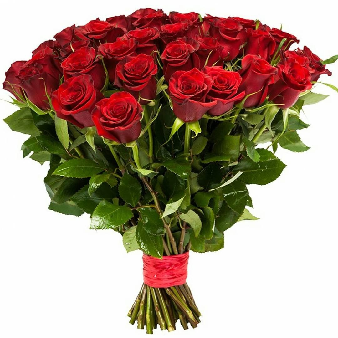 Букет из 25 роз купить тверь