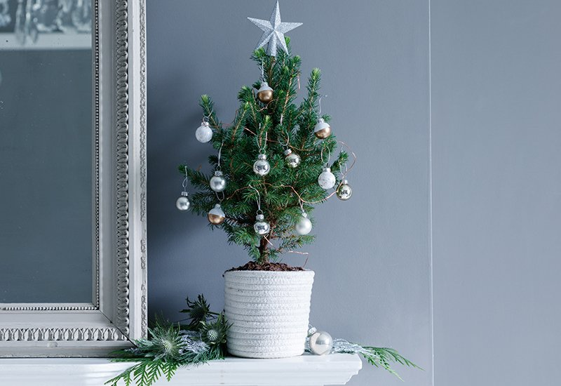 this year weve given our letterbox christmas tree a luxe makeover with a premium pop up pot and elegant white decorations send it httpbitly2jlxn5r - Elegant White Christmas Decorations