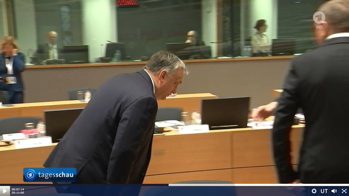 Image result for orbán aliyev