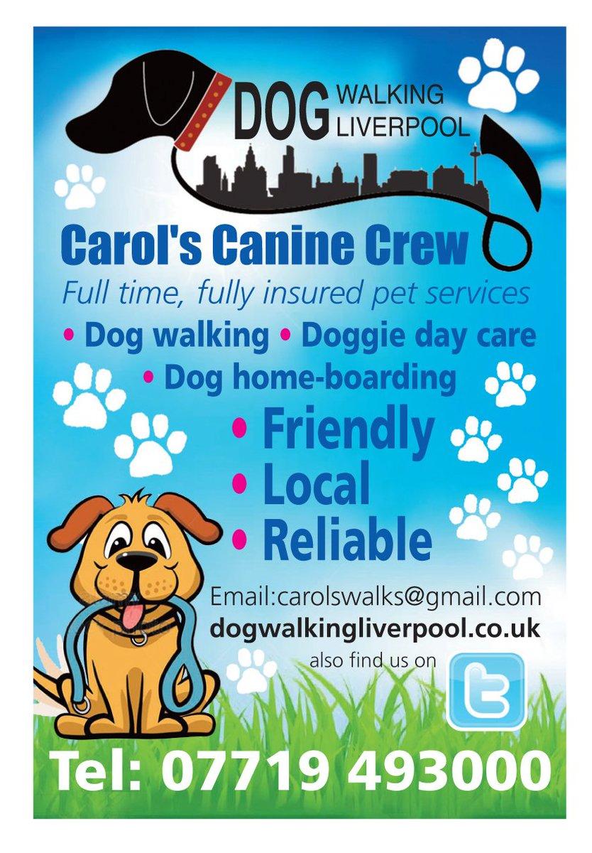 Carols canine crew carolswalks twitter 1 reply 10 retweets 5 likes reheart Images