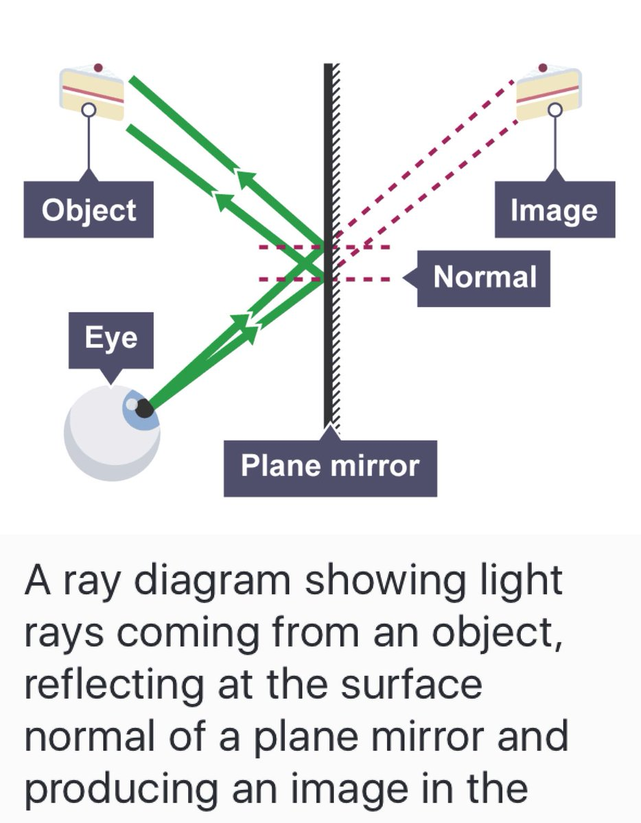 Gcse on twitter be careful with the bbc bitesize revision be careful with the bbc bitesize revision app if you draw light coming out of an eye towards an object you will not get the marks ccuart Image collections