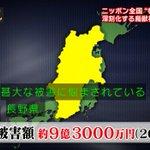 長野県のカカシ強すぎる!自動迎撃システムによりサルに攻撃する!