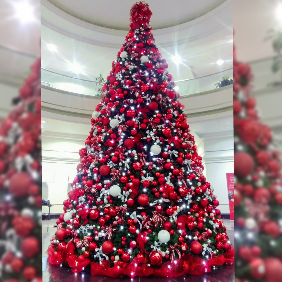 Sharon bosley house on twitter and the avgd team does it again canada post ottawa headquarters is christmas ready make sure to stop by and enjoy this massive 20 ft tree while mailing your letter to santa spiritdancerdesigns Gallery