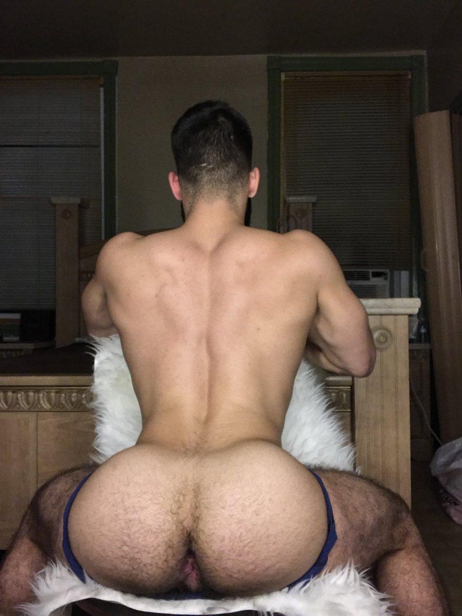 gay bareback video torrent