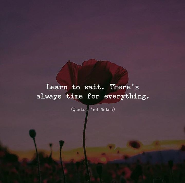 Quotes Nd Notes On Twitter Learn To Wait Theres Always Time For