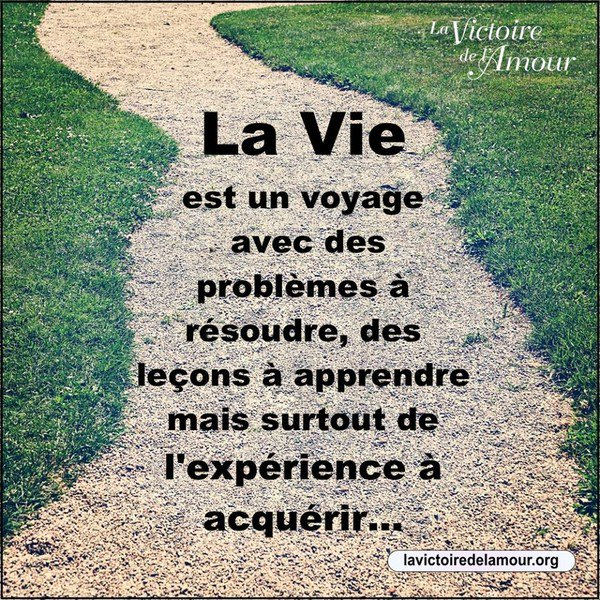 Blagues Et Citations в Twitter La Vie Est Un Voyage Avec