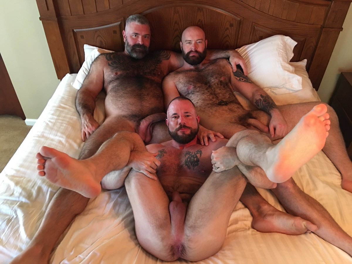 Bear accounts