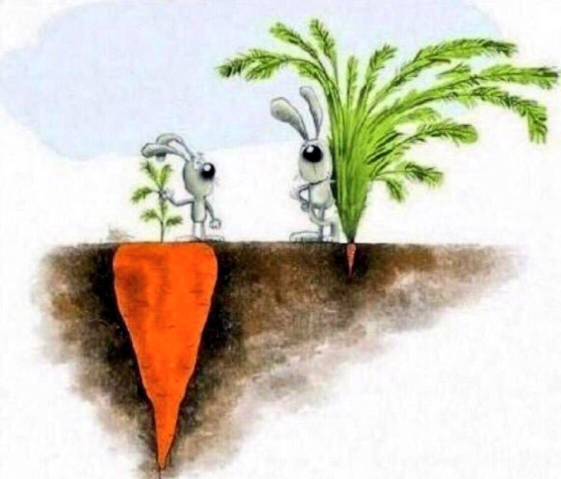 """""""Success is not always what you see."""" #T..."""