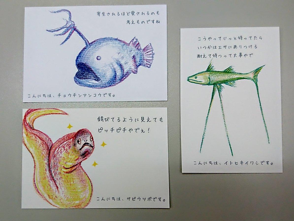 「おがわゆかこ お魚デザイナー」の画像検索結果