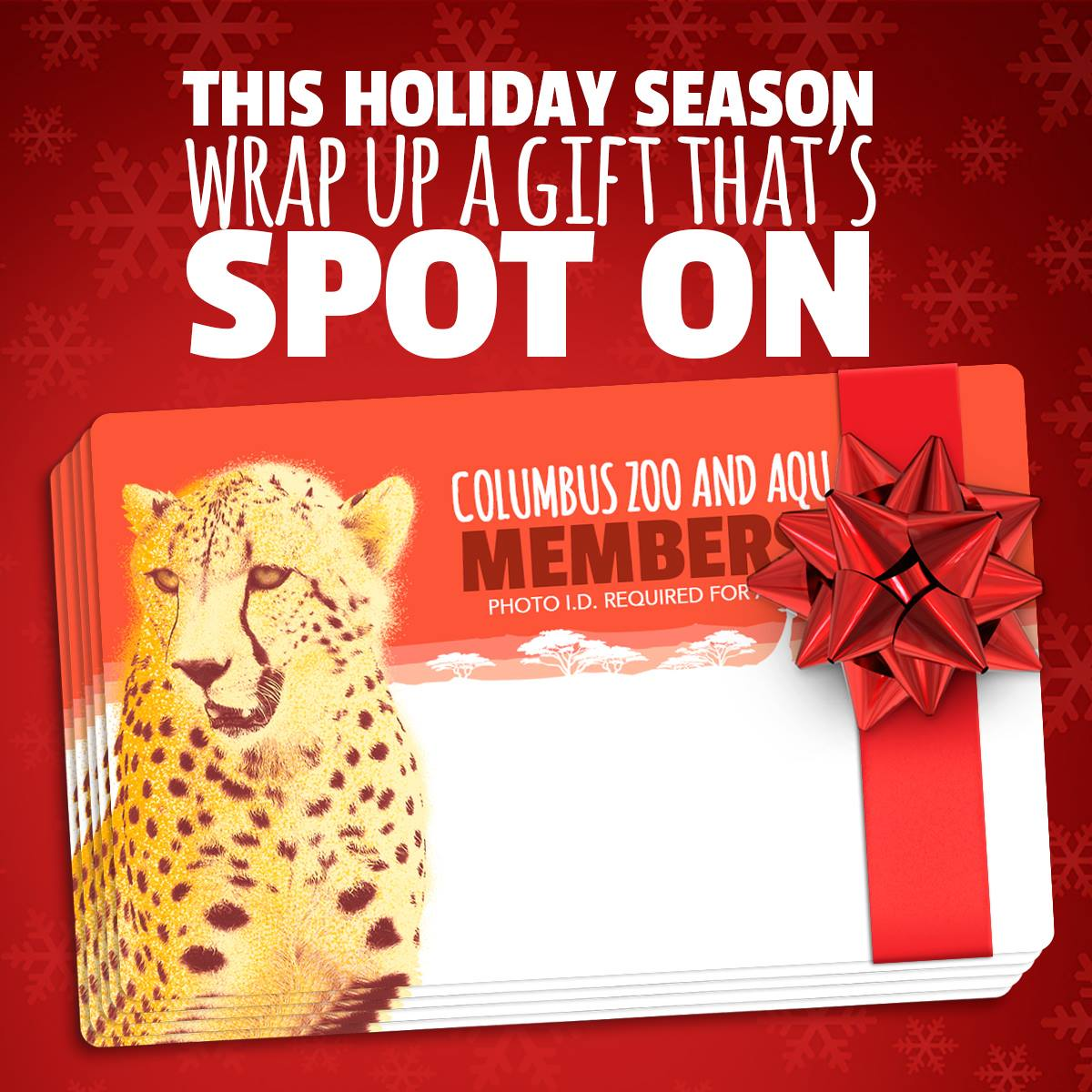 Columbus zoo on twitter wrap up a wild gift thats spot on today available online and valid for new members only get the deal here httpbitcolumbuszoomember and enter 17holiday in the promo code box under m4hsunfo