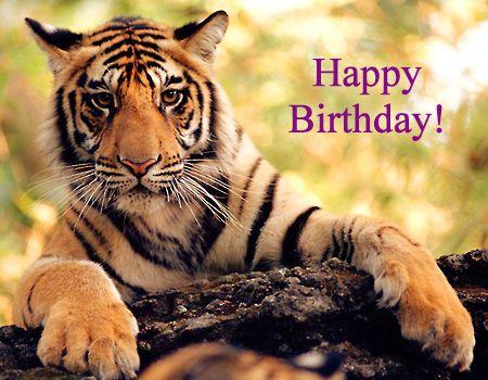 """Résultat de recherche d'images pour """"happy birthday tiger pictures"""""""
