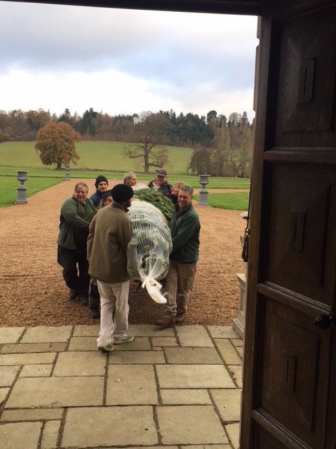It's arrived! Our beautiful #ChristmasTree for the Great Hall. Good work, chaps! Alexander Phil Martin Steve Burney Trevor Brett and .... Gill! #teamloseley #christmasiscoming #christmastradition #only27sleeps #keepontrucking! 🎄🎄🎄🎄
