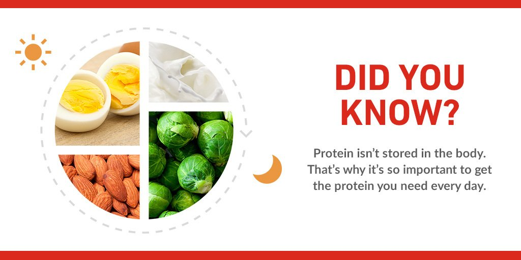 Did You Know That Protein Isnt Stored In The Body Learn This And More On Our Facts Page Boost Nutrition 10