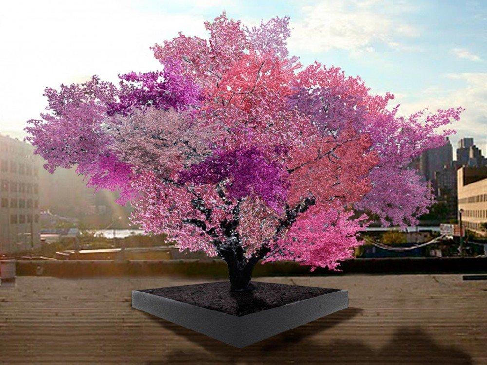 Te presentamos al árbol que da 40 tipos de frutas O_O Un escultor estadounidense lo ha logrado gracias a múltiples injertos ¡Fantástico!:  https://t.co/lsOEllXgMQ