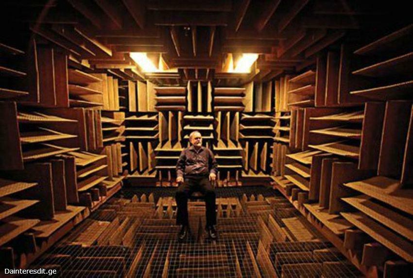 音を吸収する板が6面全ての壁にギザギザに突き出すようにズラリと並んでおり、床はその上に金網が貼られた小部屋