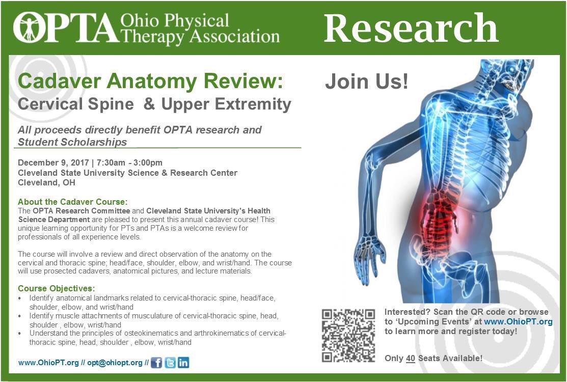 Anatomy Cleveland Ohio Gallery - human body anatomy