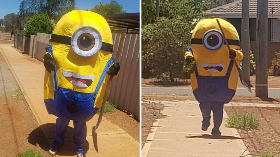 Despicable Minion taunts homeowner after caught on CCTV stealing his lawn in WA. https://t.co/XM0qErYBVJ #7News