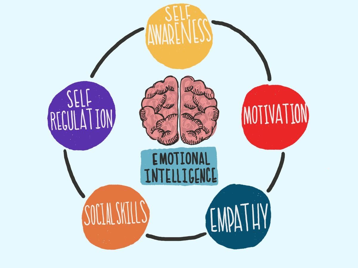 social emotional intelligence The social + emotional profile (seip)®) the social + emotional intelligence profile-self (seip)® is the most comprehensive, statistically-reliable, scientifically-validated instrument on the market todaylearn more.