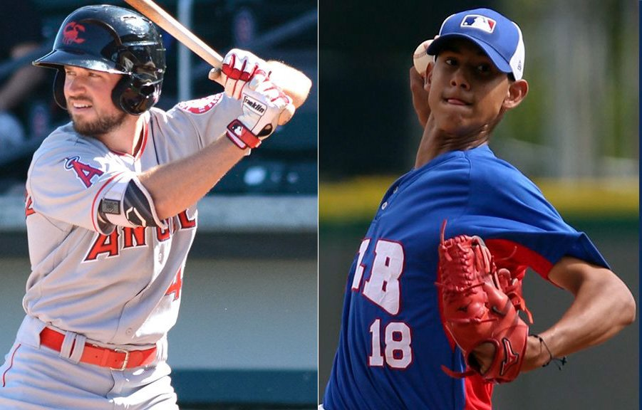 The #Tigers have acquired RHP Wilkel Hernandez and OF Troy Montgomery from the Los Angeles Angels in exchange for INF Ian Kinsler. With the completion of the trade, the  40-man roster is now at 38.
