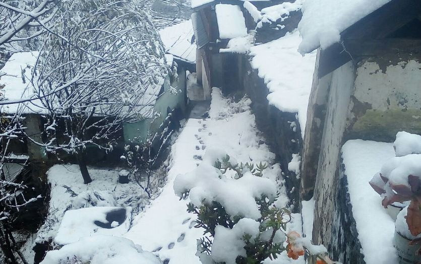 Himachal Pradesh: Snowfall wraps Bharmau...
