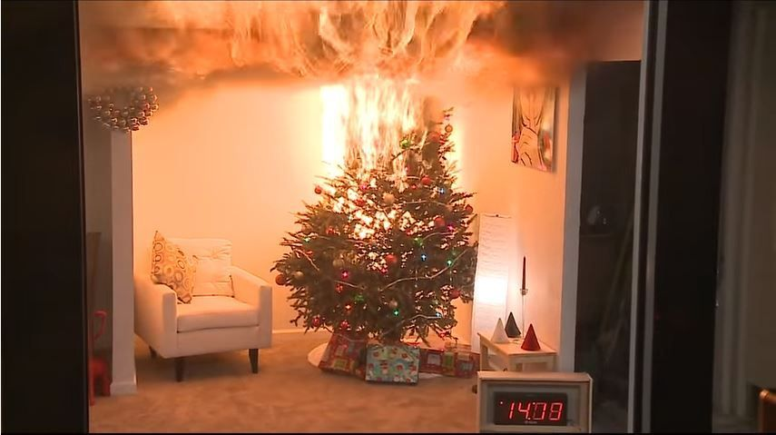 VIDEO: Protecting your home from a fire; remember to water your Christmas tree  Watch the full video @ NC10: https://t.co/CtnNDU8UHM