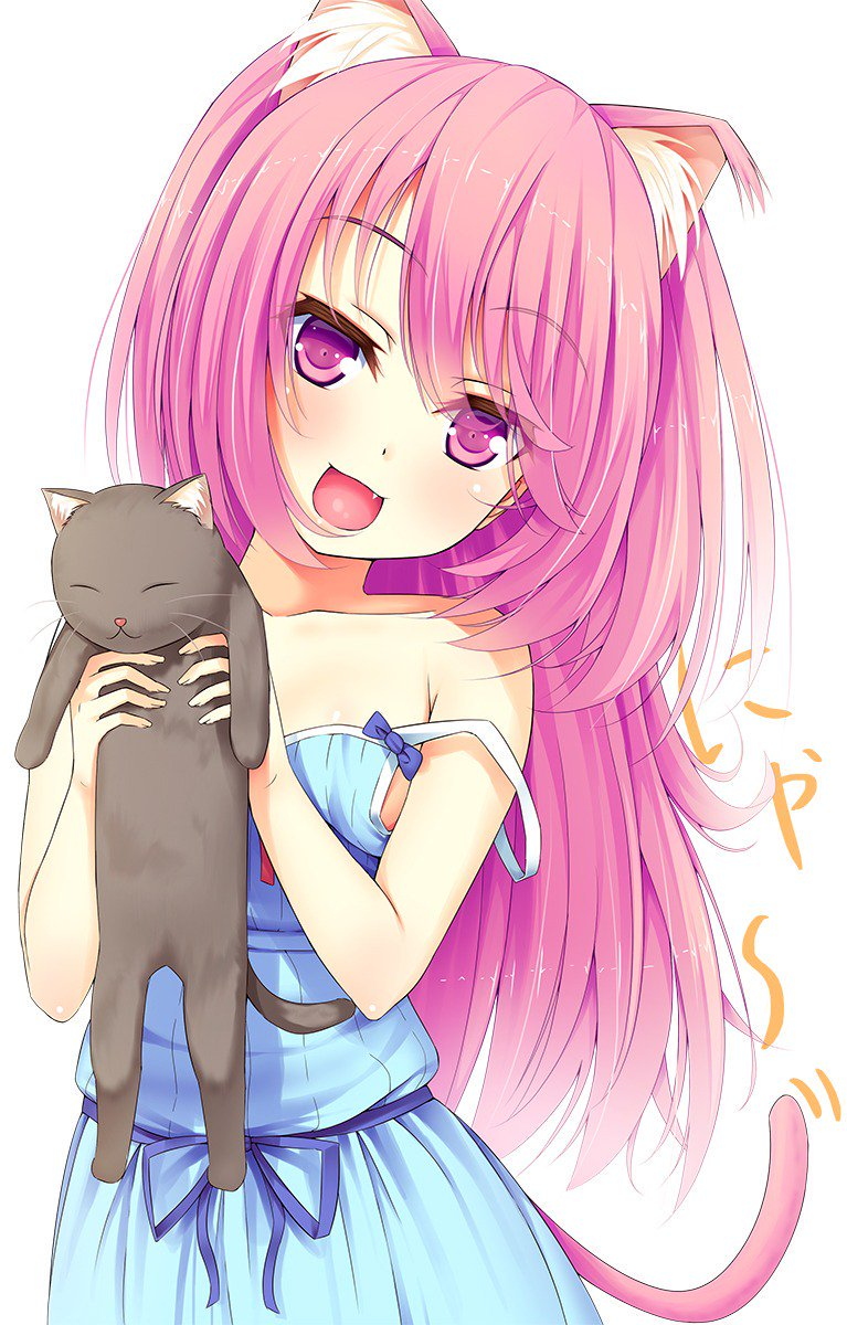 "anime neko girl on twitter: ""… """