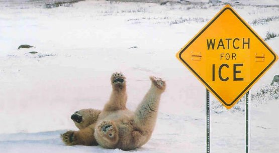 Enjoy your day, beware of the pesky ice!...