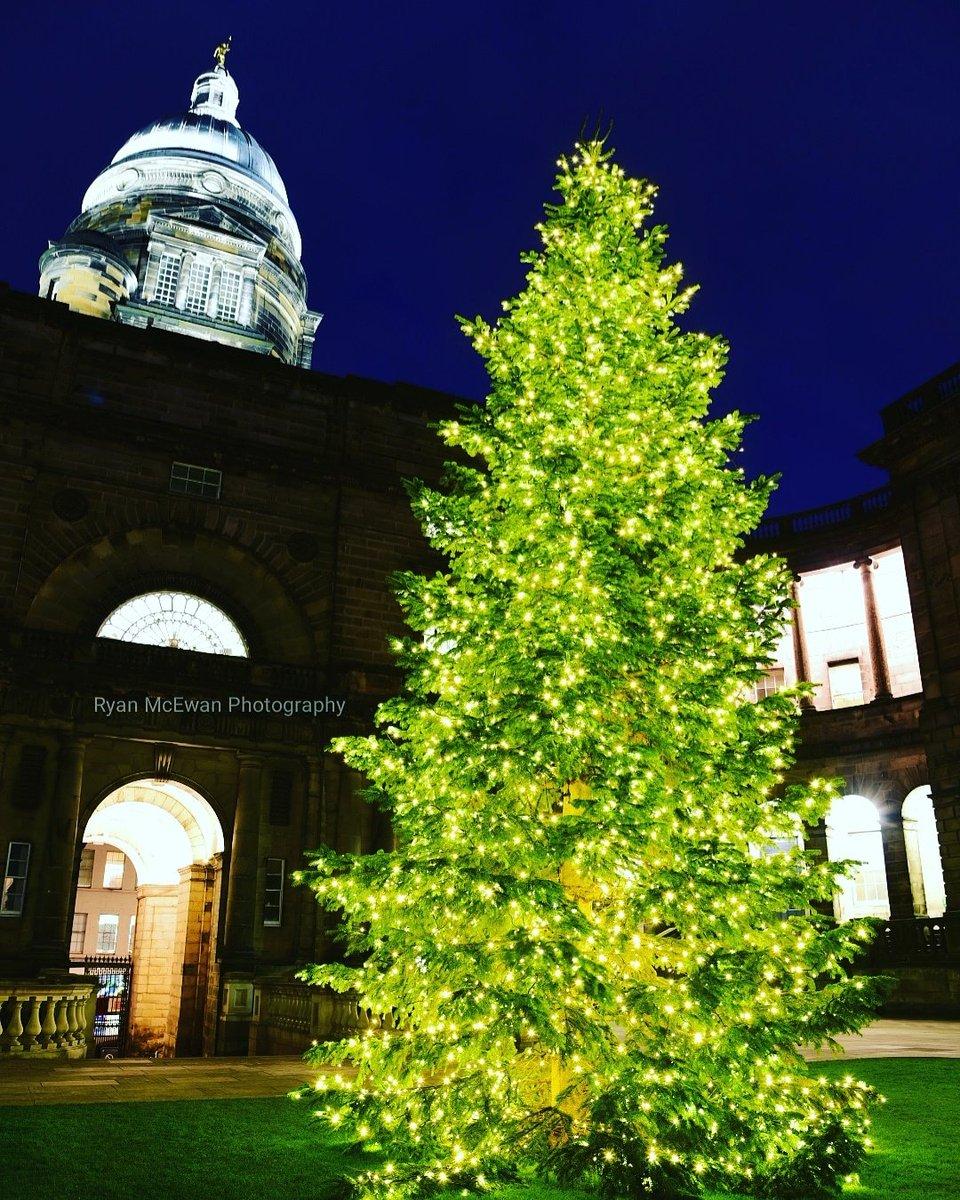 edinburgh spotlight on twitter old college quad christmas tree last night edinburgh - How Long Can A Christmas Tree Last