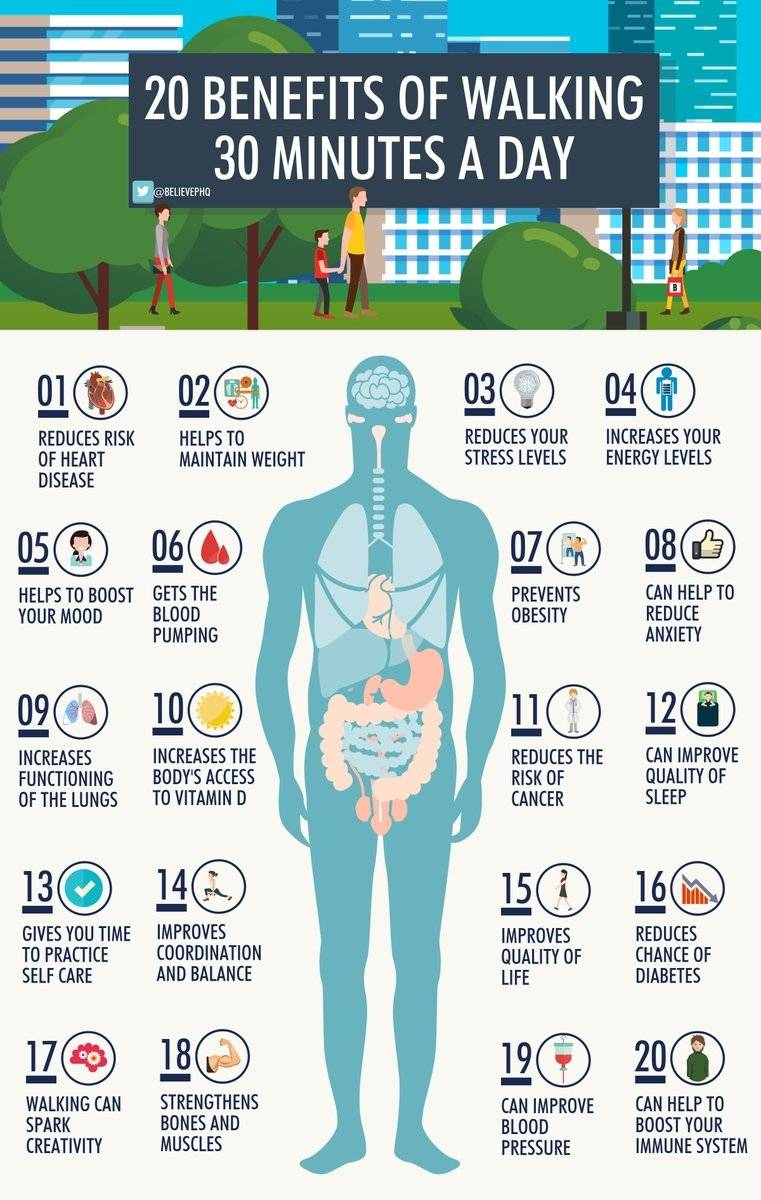20 benefits of walking 30 minutes a day. #health #body #exercise <br>http://pic.twitter.com/dHz8t63pgb