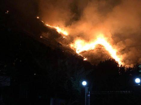 Incendio doloso nei boschi sopra Carini, per tutta la notte minacciate le abitazioni - https://t.co/IvqgPwWkAY #blogsicilianotizie