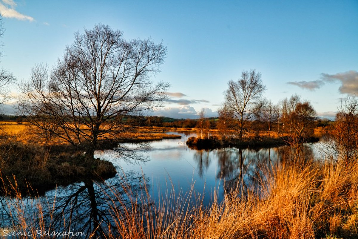 harmony of the mind on twitter winter lake reflections