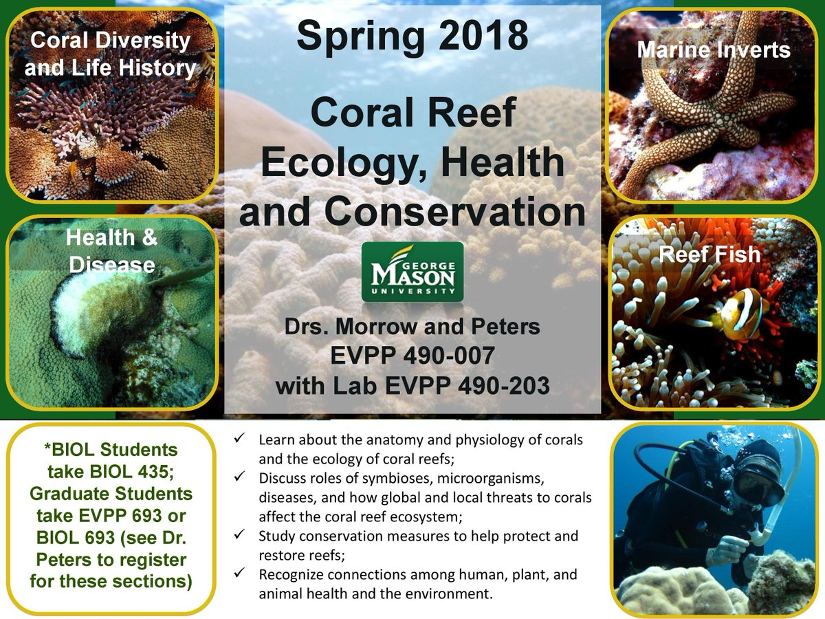 Esp Dept Gmu On Twitter New Coral Reef And Microbial Ecology