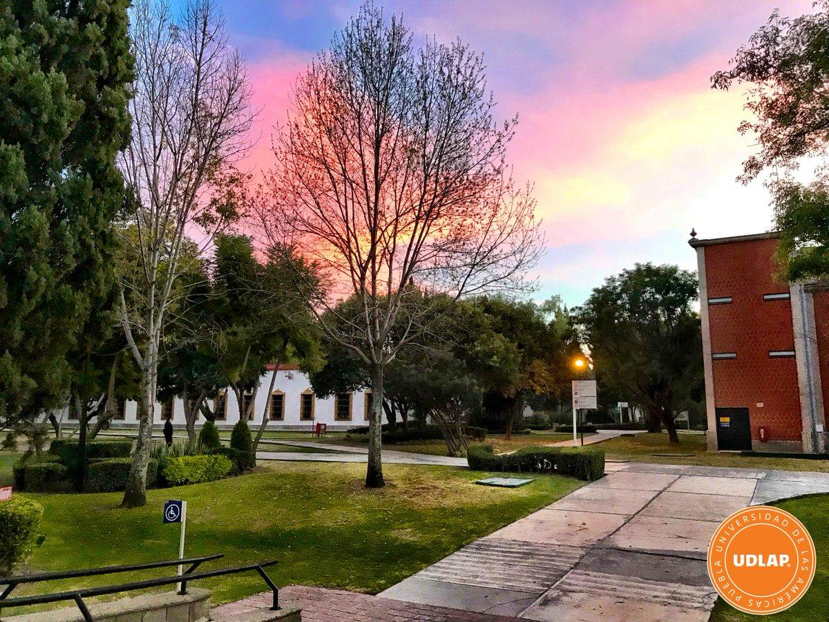 Y el último día del semestre nos despide con esta bonita #FotoDelDía ???? https://t.co/XAr74WpFo8