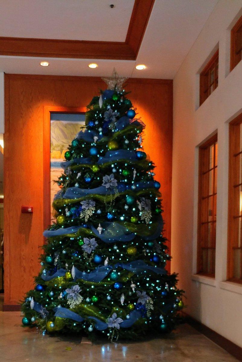 Seahawks Christmas Tree.Hapa Mamabear On Twitter This Christmas Tree Is Perfect