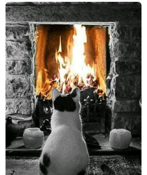av on twitter bonne soir e bien au chaud au coin du feu. Black Bedroom Furniture Sets. Home Design Ideas