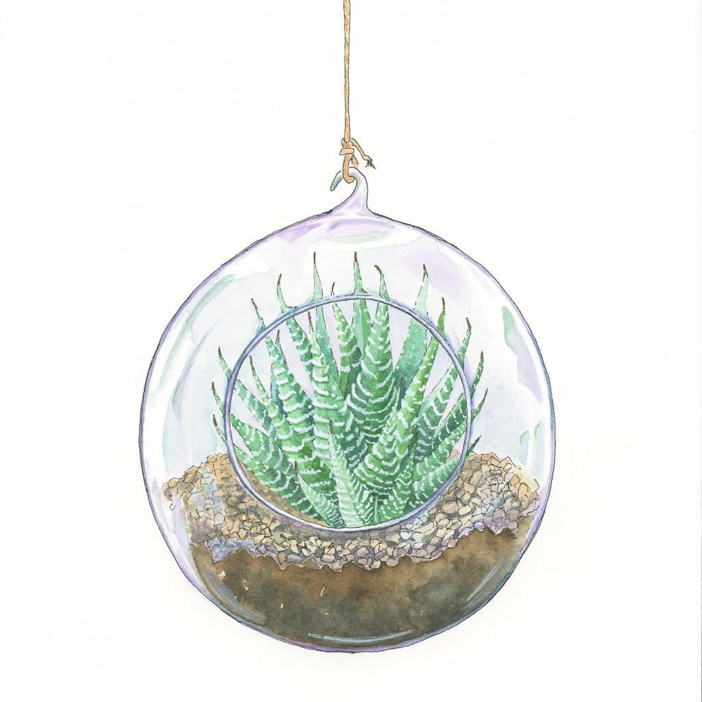 Lynsey Thomas On Twitter Newest Terrarium Painting Finished And Up