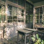 最近で一番朽ち方が最高だった秘境の廃校。特に気に入ったのは蔦の生えた木枠の窓のついた廊下の壁が浮いて…