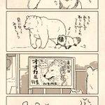 (たぬきを特集してらっしゃる動物園もたくさんあるはず...!) pic.twitter.com/Pu…