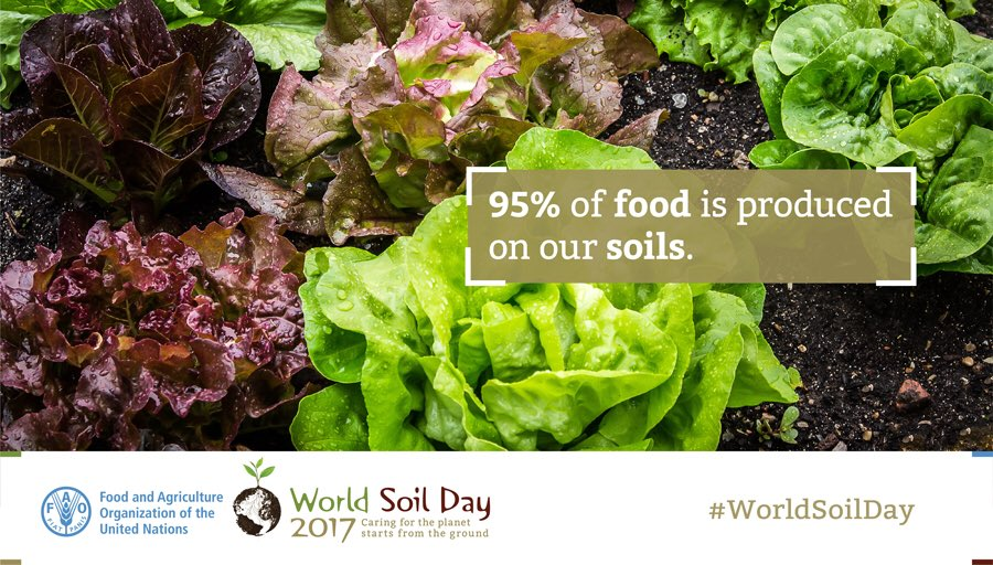 Image result for world soil health day Dec 5