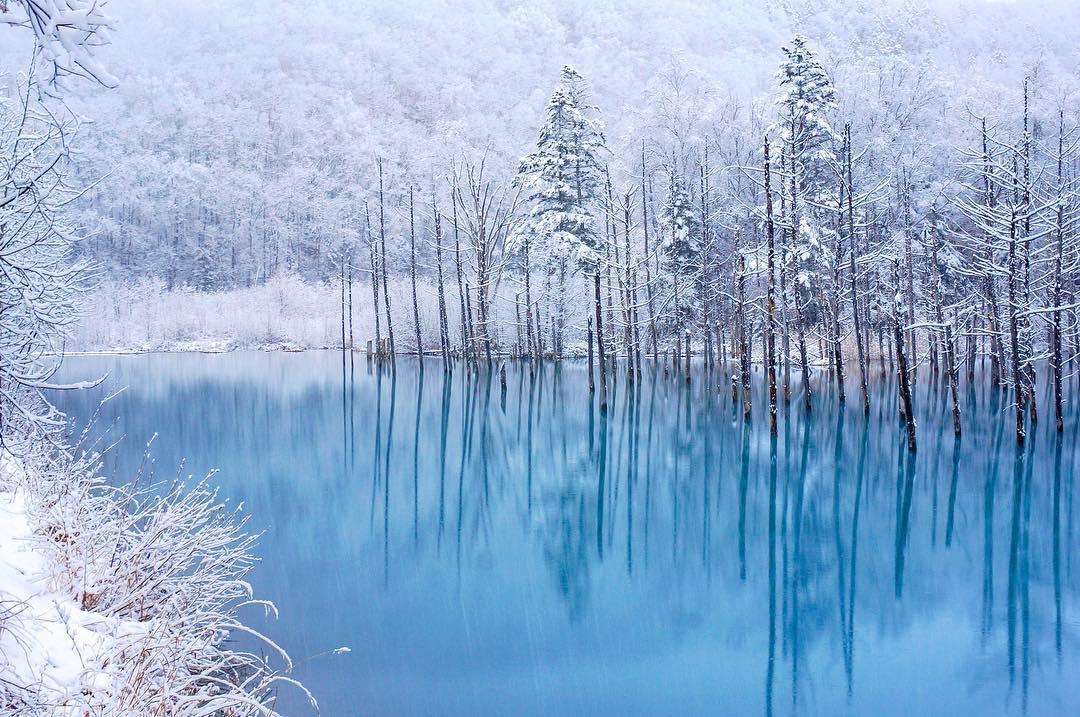 北海道『青い池』