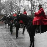 平民から語彙力を根こそぎ奪う女王陛下の騎馬隊のポートレイト。あまりの美しさに「美しい…尊い…」しか出…